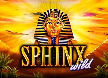 Slot Sphinx dla wszystkich fanów dobrej zabawy